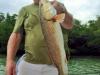 charlieredfish
