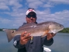 redfish4